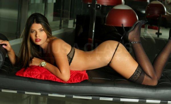 Veja fotos e mais informações de Sofhia Brandão